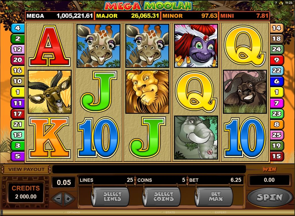 One of the popular slot games - Mega Moolah